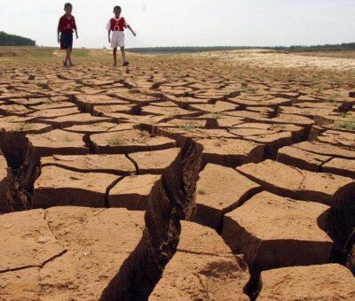 Considerado un recurso no renovable, el suelo enfrenta una degradación que se aceleró en los últimos años. (Especial)